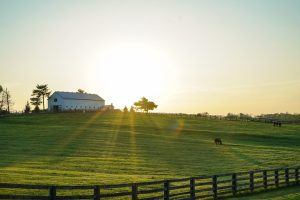Asheville homes with acreage